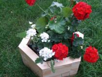 Ghivece din lemn pentru curte, gradina, foisor