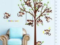 Sticker Decorativ, Masuratoare Cu Maimutele, 182 Cm, 89STK