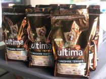 Hrana uscata bobite caini de pui ultima yorkshire terrier