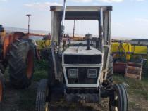 Tractor lamborghini 603