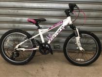 """Bicicleta CARRERA 20"""""""