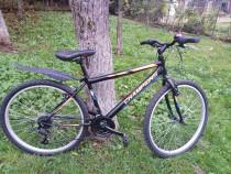 "Bicicleta Champion 26 """