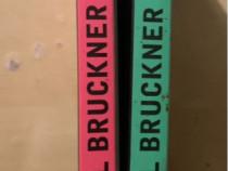 Pascal Bruckner: Luni de fiere / Hoții de frumusețe
