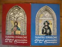 Dumitru Staniloae - Chipul nemuritor al lui Dumnezeu (2 vol)