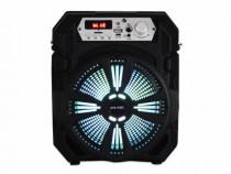 Boxa portabila 20W KTS-1150C, Wireless, Karaoke, RGB