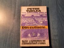 Din culisele parlamentului vol. 1 1990 1992 Petre Turlea
