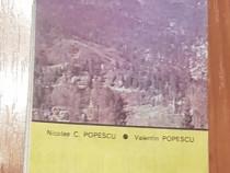 Muntii Bucegi. Harta turistica de Nicolar C. Popescu