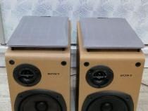 Boxe SONY SS-CCP1.