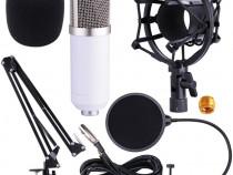 Microfon profesional de Studio Condenser BM-700,cu stand inc