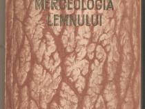 Merceologia Lemnului