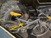 Bicicleta mica, biciclete mari