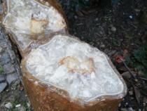 Geoda cuart pereche 5 kg.