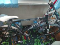 Bicicleta Focus cypress disc sport