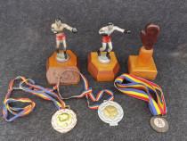 Lot Premii / Medalii BOX.
