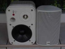 Boxa JBL Control 2,4G cu amplificare +CANTON Plus X 30