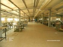 Hale industriale 3600 mp, zona Vlaicu