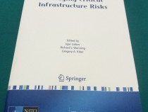 Managing critical infrastructure risks/2007