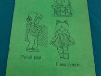 Caiet de puericultură/ anii 1980/ necompletat