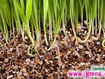 Vermiculita  Produs ecologic pentru gradina !