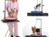 Curs de frizerie canina si felina Targoviste