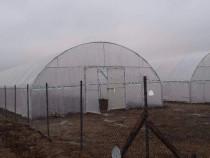 Solare legume la preturi de producatori