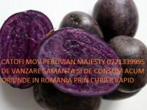 Samanta Cartofi Mov Peruvian Ultimi 70 kg Oriunde in Romania
