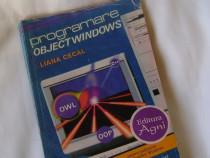 """Carte """"Programare ObjectWindows""""-Liana Cecal"""