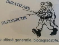 Deratizare Dazinsectie