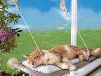 Pat/Patut pentru pisici suspendat