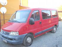 Microbuz Fiat ducato 8+1.