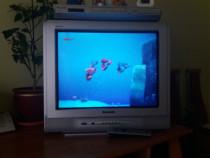 Televizor Panasonic Quintrix cu dvd