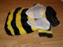 Costum carnaval serbare albina albinuta pentru catei M