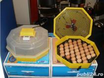 Repar orice tip de incubator oua ( Cleo ,Puisor, etc )