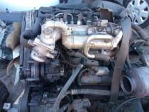 Motor, anexe, Kia Sportage, 170 cp, 2007, D4CB