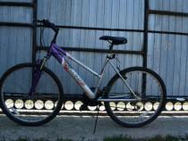 Bicicleta Bullet Challenge mountain bike