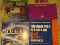 Informatica . Programare in limbajul C/C++ pentru liceu.