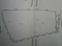 Teren 1325 mp pentru casa cu apa, curent, asfalt