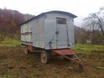 Pavilion apicol inmatriculat, echipat cu 32 stupii