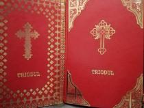 Molitfelnic în piele, Liturghier, Penticostar, Mineiul, Octo