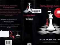 Breaking Dawn Twilight Saga - Volume 4
