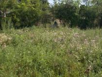 Teren 560mp, fs=11m, Timisoara, zona Mehala, utilitati
