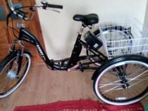 Tricicleta electrica adulti pliabila 24 toli 6 viteze