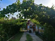 Proprietar casa cu teren mare Rosiori de vede Central
