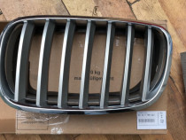 Grila radiator capota motor Bmw X6 E71 2007 - 2014 Nara