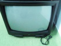 Televizor cu telecomanda