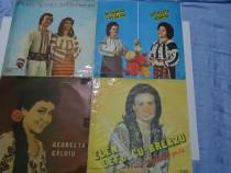 Discuri vinil Muzica Populara-Romante