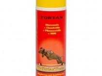 Supliment articulatii caini Plu-Fortan Protect