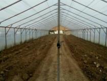 Solar pentru legume sau plante  sera de legume sau flori