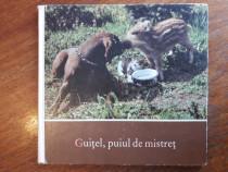 Guitel, puiul de mistret - Herbert Seyfarth / R7P4S