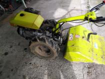 Motcultor grilo benzina 10 cavali
